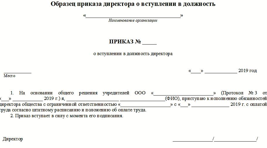образец приказа о назначении гендиректора ООО 2019