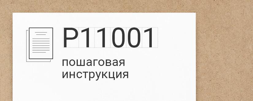 заполнение формы р11001 образец заполнения 2017